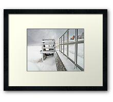 Snow Whites Framed Print