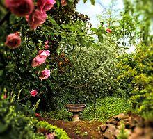 Enchanted Garden, Portland by Richard Mason