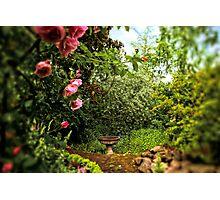 Enchanted Garden, Portland Photographic Print