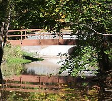 Holley NY Canal Bridge by suzyrissew