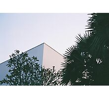 Tropical Architecture Photographic Print