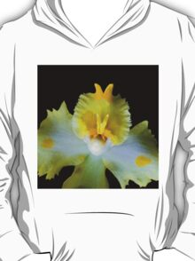 Granny Polka Dot - Orchid Alien Discovery T-Shirt