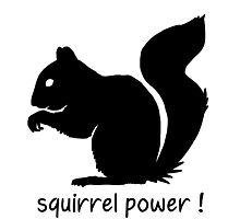 Squirrel Power! Photographic Print