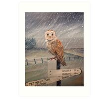 Waiting for the storm to pass.... Art Print