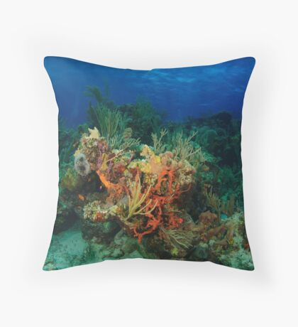Colorful Caribbean Reefscape Throw Pillow