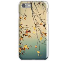 A Poem from Nature iPhone Case/Skin