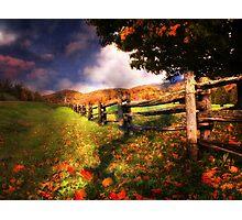 Autumn Awakening Photographic Print