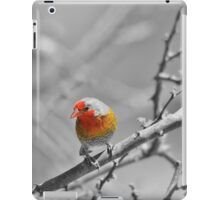 Melba Finch - Selective Coloring - Wildlife Colors of Gold and Red iPad Case/Skin