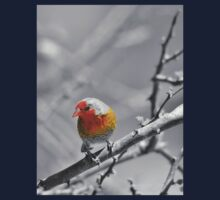 Melba Finch - Selective Coloring - Wildlife Colors of Gold and Red One Piece - Long Sleeve