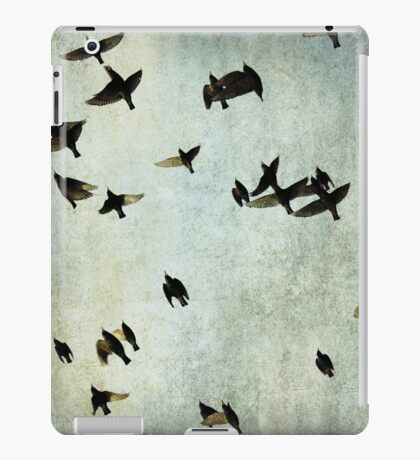 Let's fly iPad Case/Skin