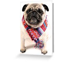 I AM PUG..... in scarf... Greeting Card