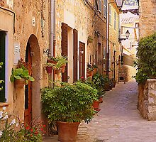 The Brown Shuttered Houses Of Valldemossa by Fara