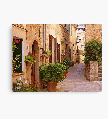 The Brown Shuttered Houses Of Valldemossa Canvas Print