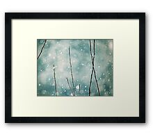 The sound of winter Framed Print