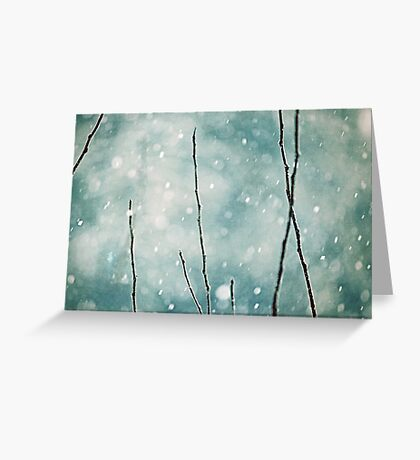 The sound of winter Greeting Card