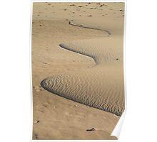 Miniature Dune Landscape Poster