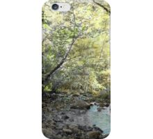 Brookwalk iPhone Case/Skin