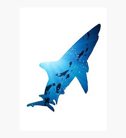 Deep Ocean Shark Photographic Print