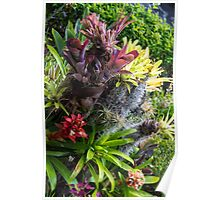 Cosmic Flowers - Nature Photography Poster