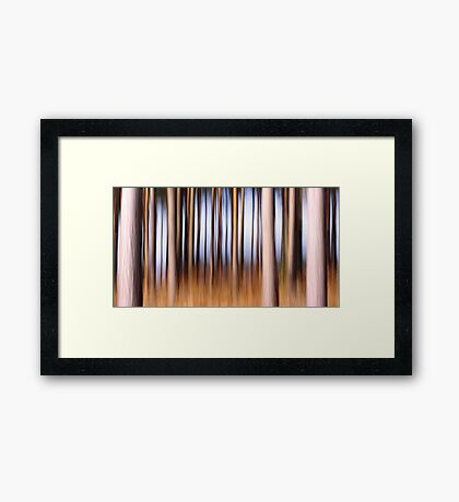 Deep in the Forest Framed Print