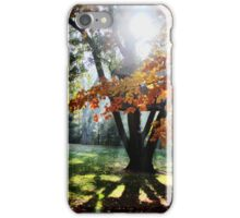 Autumn tree iPhone Case/Skin