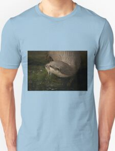 Close-up of Asian short-clawed otter entering water T-Shirt