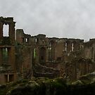Kenilworth Castle on a Cloudy Day by JohnYoung