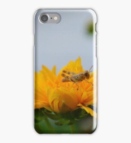 Grasshopper Resting iPhone Case/Skin
