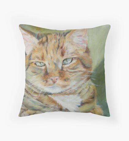 Sitting in the Sunbeam by Chris Brandley Throw Pillow