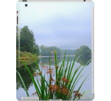 Lake and Reeds at Witley Court iPad Case/Skin