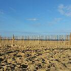 Low Angle Beach by Richard Winskill