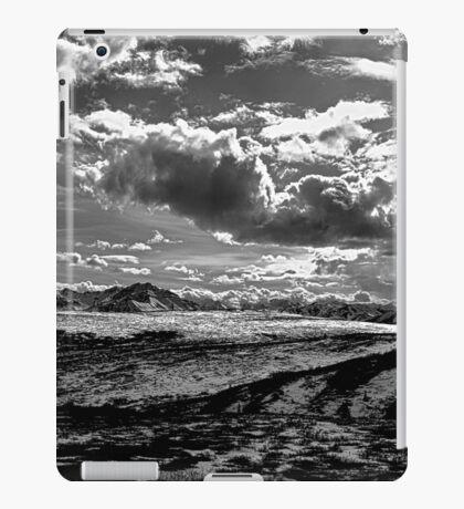 Denali National Park (BW) iPad Case/Skin
