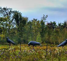 """""""3 Crows in Field"""" -1999-2001 Steel by Allen Lucas"""