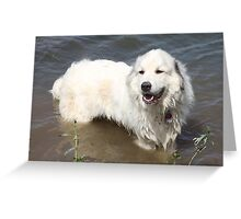 Goliath Loves the River Greeting Card