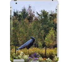 Counting Crows iPad Case/Skin