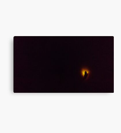 Firefly in my dream... Canvas Print
