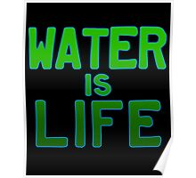 Water Is Life. No Dapl Poster