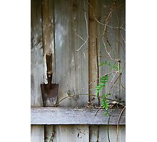 Paling fence Photographic Print