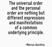 The universal order and the personal order are nothing but different expressions and manifestations of a common underlying principle. by Quotr