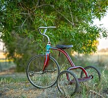 My Little Tricycle.... by mitpjenkeating