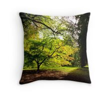 Acer Glade Throw Pillow