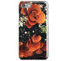 False Turkeytails iPhone Case/Skin