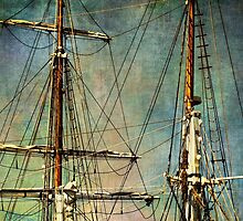 Up in the rigging by Celeste Mookherjee