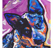 Australian Cattle Dog Bright colorful pop dog art Photographic Print