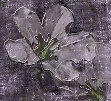 Wild Geraniums Go 3-D by MotherNature