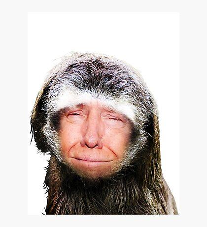 Sloth Ronald Slump Photographic Print