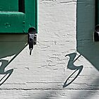 Shutter Latches by cclaude