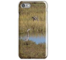 The Peaceful Pond iPhone Case/Skin