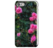 Climbing roses in a historic setting iPhone Case/Skin