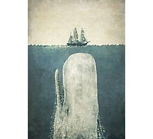The White Whale  Photographic Print